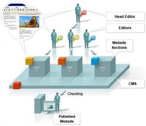 content management system1 300x259