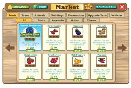 Farmville Market