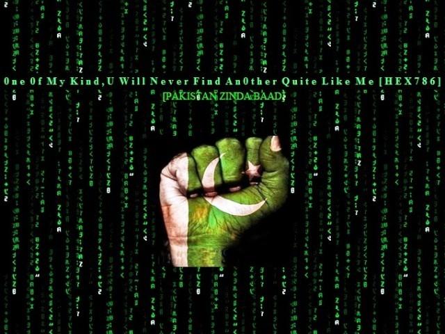 'Predators PK' Hack Over 200 Indian Websites